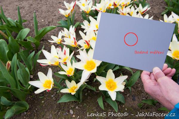 Fotíme venku II Ilustrační foto