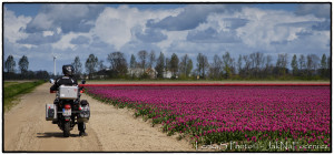 Holandská jízda