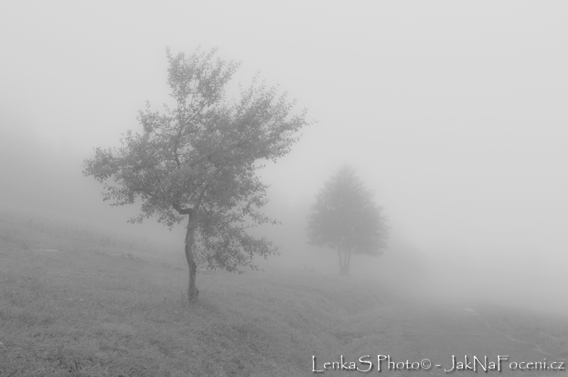 Jak fotit venku - mlha