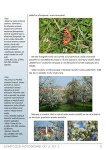 Kompozice fotografie - ukázka