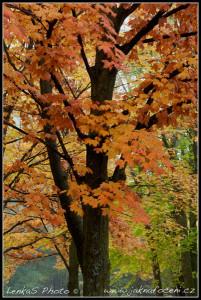 Ontarijský podzim