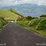Cesta na ostrově Pico