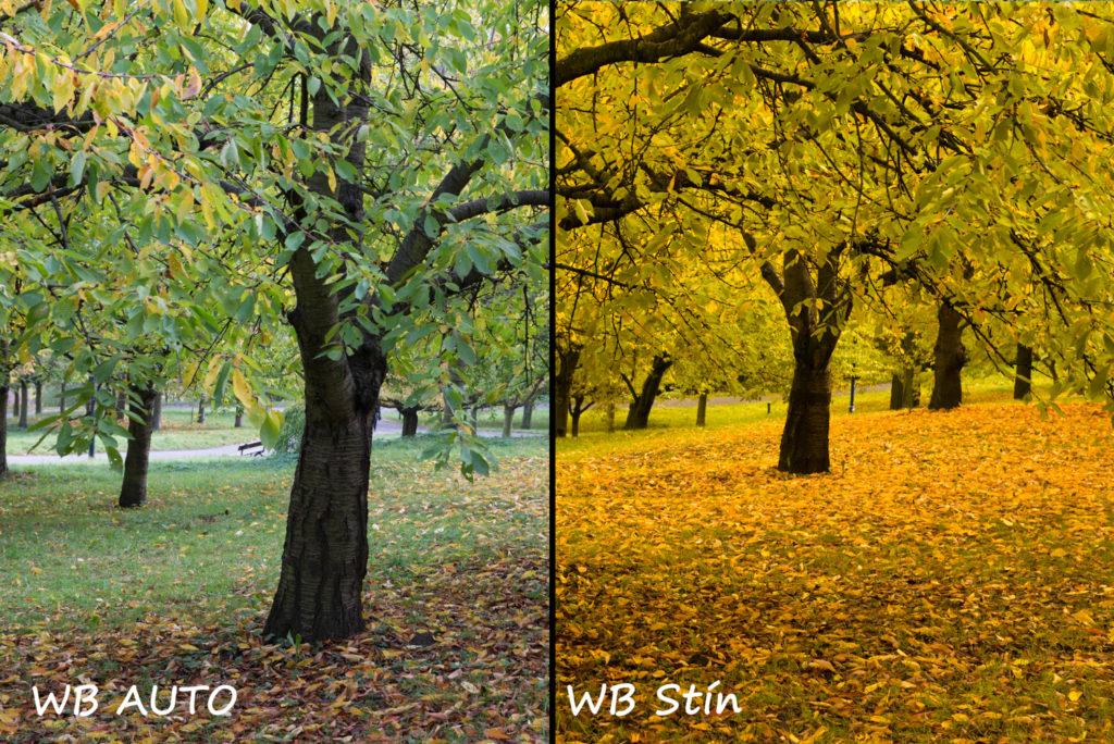 Podzim a nastavení WB
