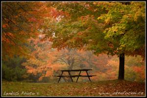 Podzimní romance v Ontariu