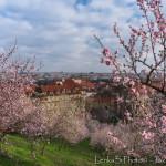 První jarní dny nové sezony