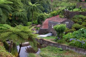 Sao Miguel - zahrady
