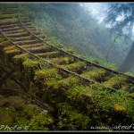 Tchaj-wan - Opuštěná železnice v Taipingshanu III