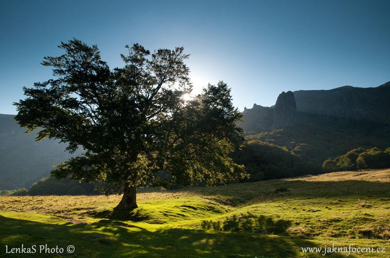 Fotografie Světlo v krajině