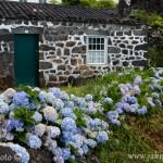 Azorské ostrovy tradiční dům