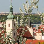 Kostel Panny Marie Vítězné II