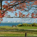 Niagara River a Buffalo