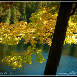 Podzim u Crawford Lake